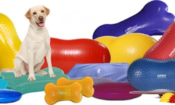 1-NEW_FitPAWS_-Deluxe_Rehab_KIT